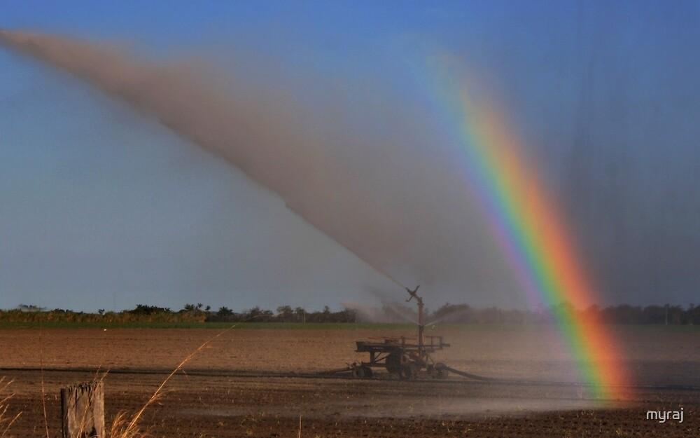 Irrigation Rainbow by myraj