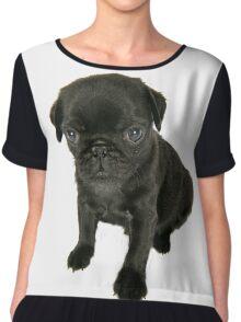 Cute sad looking black Pug puppy Chiffon Top