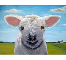 Happy Day farm animal landscape - lamb oil painting Photographic Print