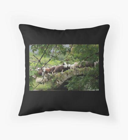 Cumbrian rush hour Throw Pillow