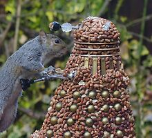 Extermi-Nut! by ChrisBalcombe