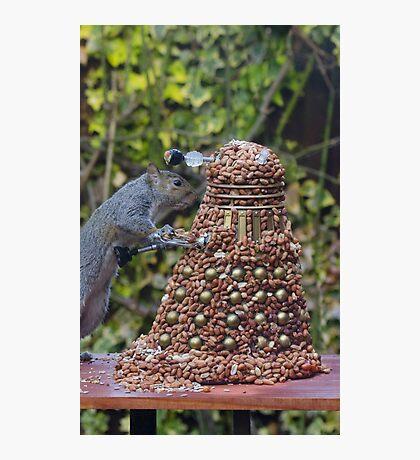 Extermi-Nut! Photographic Print