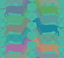 Dachshund Color Parade by Mivaldi
