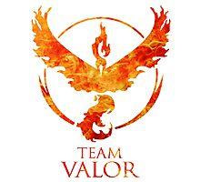 Team Valor - PGo Photographic Print