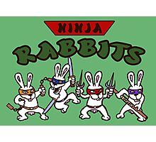 ninja rabbits for a geek nerd fun guy who like tmnt turtle Photographic Print