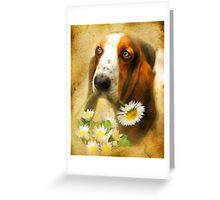 For You .... Greeting Card