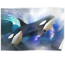 Orca Wild Poster