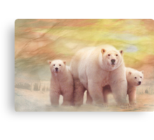 Arctic Summer Canvas Print