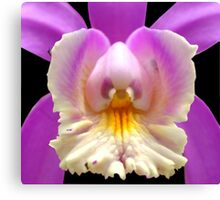 Cady Bug - Orchid Alien Discovery Canvas Print