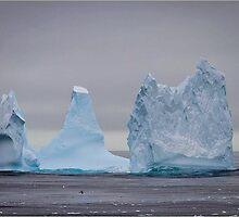 Ice Berg - Ross Ice Shelf by Karen Stackpole