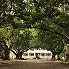The Château de Labourdonnais, Mauritius by Irina Chuckowree