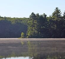 Misty Over Pond by CapeCodGiftShop
