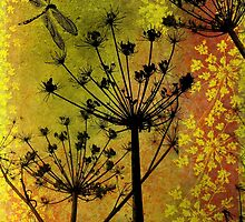 Fennel by Sabine Spiesser