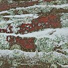 Snow Hills by Marilyn Cornwell