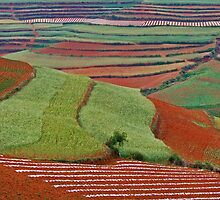 Red Land 06 by jasonksleung