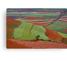 Red Land 06 Canvas Print