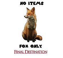 No Items. Fox Only. Final Destination! Photographic Print