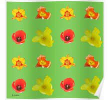 Tulips on green flash Poster