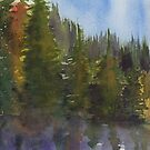 Evergreen Reflection by Natalie Luhrs