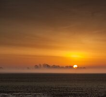 Misty sunrise over the Lincolnshire Fens by David DALES