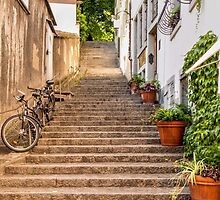 Back Street Steps by Lynne Morris