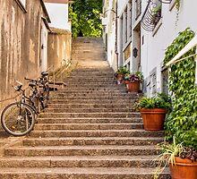 Back Street Steps by Lynne Morris