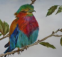 LILAC - BREASTED ROLLER by Marilyn Grimble