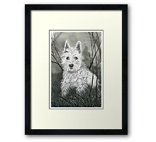 Buddy the Dog - www.jbjon.com Framed Print