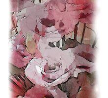 Splash of pink by OlaG