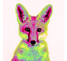 Psychedelic Fox Photographic Print