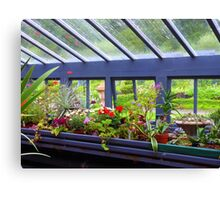 The Greenhouse Effect Canvas Print