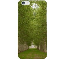 Perspective arborée iPhone Case/Skin