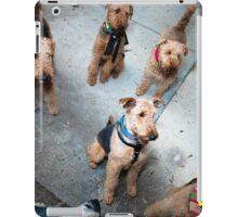 A pack-o-dales iPad Case/Skin
