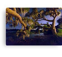 Night Oak on Johns Island Canvas Print