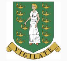 Virgin Island Coat of Arms Baby Tee