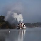 Steaming through the fog by Dave  Hartley