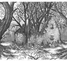 Abandoned Irish Stone House - www.jbjon.com by Jonathan Baldock