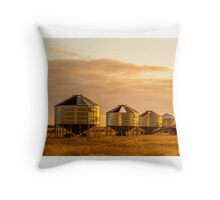 Harvest's over Throw Pillow