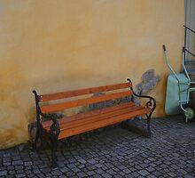 Chair and a Wheelbarrow by robinching