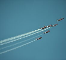 Roulettes by robinching