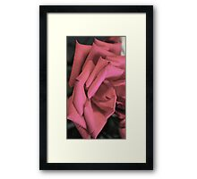 Layered Petal Stairs  Framed Print