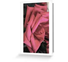 Layered Petal Stairs  Greeting Card
