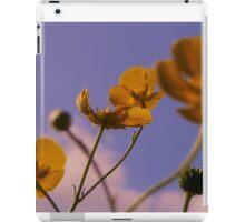 Buttercup Fields iPad Case/Skin