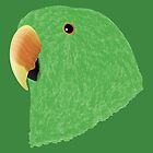 Amazon Eclectus [Male] [Prints] by Daniel Bevis