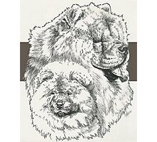 Chow Chow Father & Son Photographic Print