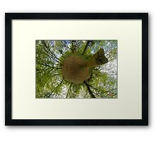 Butterfly Sculpture in Prehen Woods, Derry Framed Print