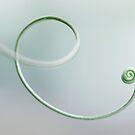 Swirl by the-novice