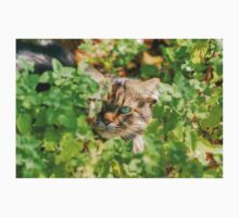 Maine Coon Hiding Kids Tee