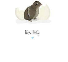 New Baby Quail - Boy by quirkyquail