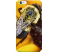 Busy Bee Fellow iPhone Case/Skin